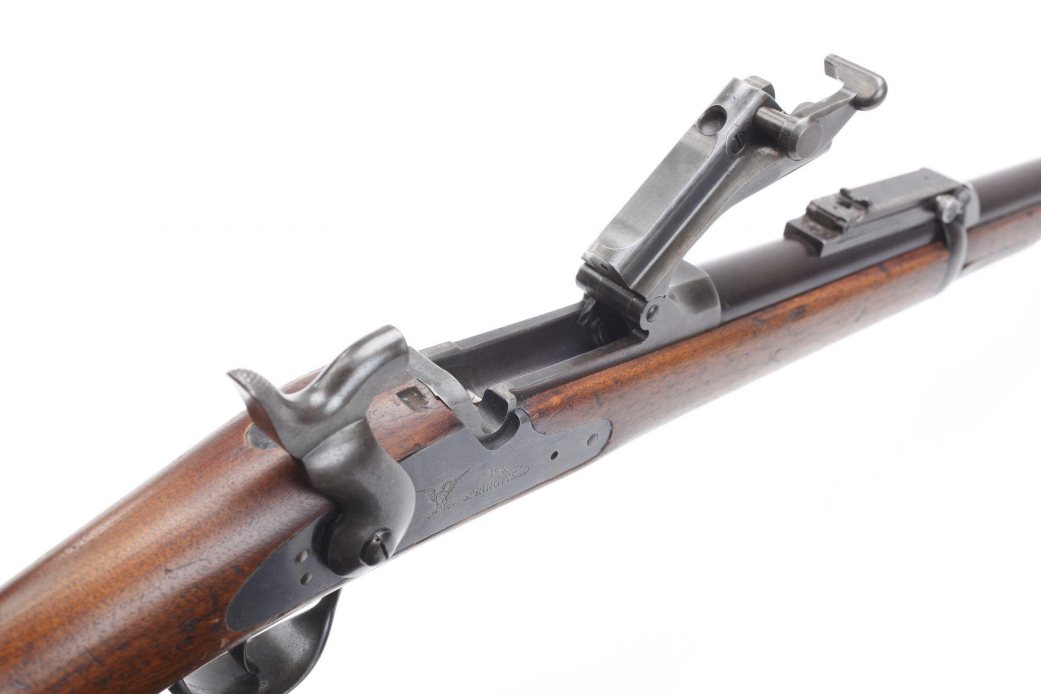 The Springfield Model 1873 Rifle - The Campaign for the